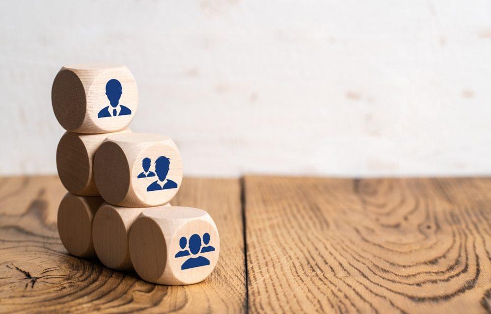 Membangun Organisasi  yang Ramping dan  Lincah