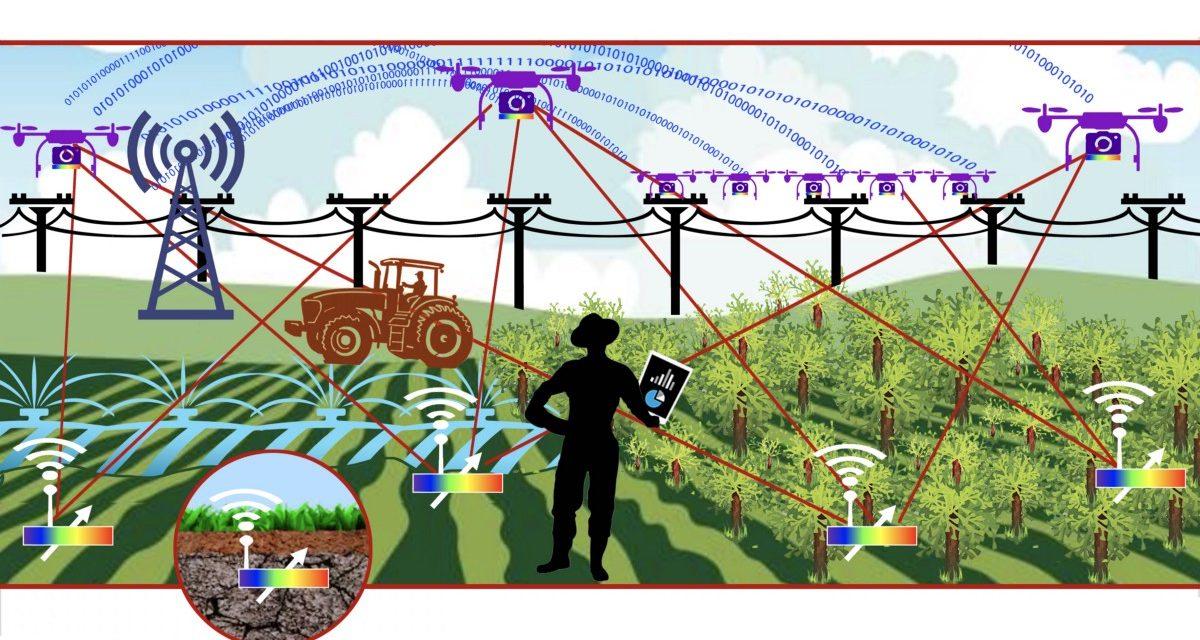 MEMBANGUN KEUNGGULAN USAHA MELALUI DIGITAL AGRICULTURE (bagian 2)